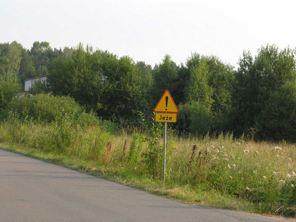 znak drogowy w strefie