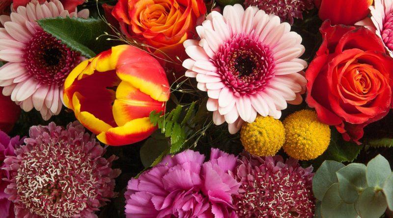 flowers-1253972_1280