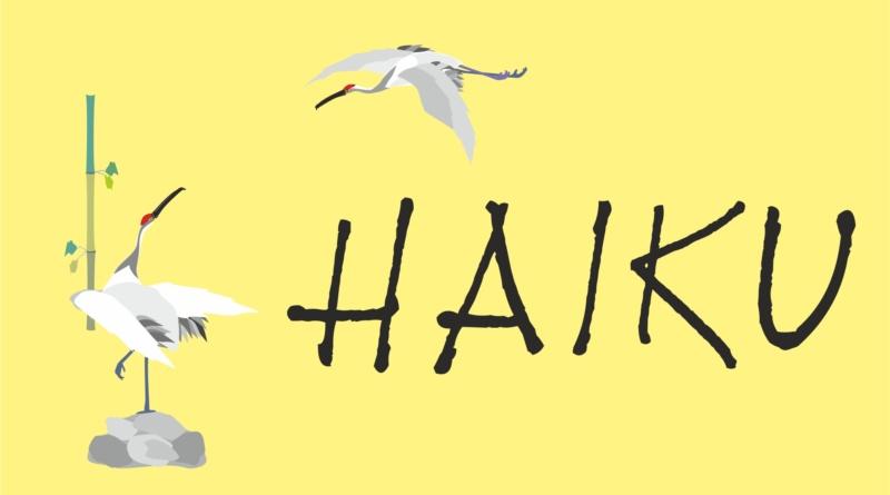 haiku-gazeta