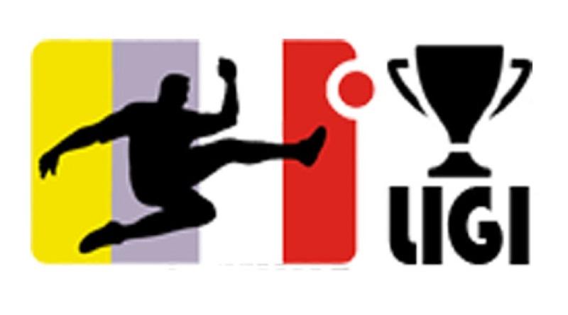 pcuhar-ligi-logo-800445