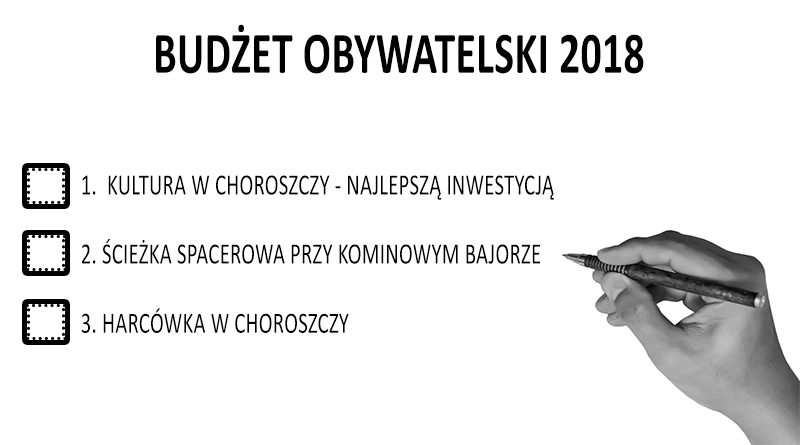 budzet 2017 glosowanie
