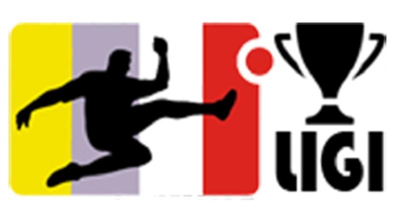 logo-puchar-ligi